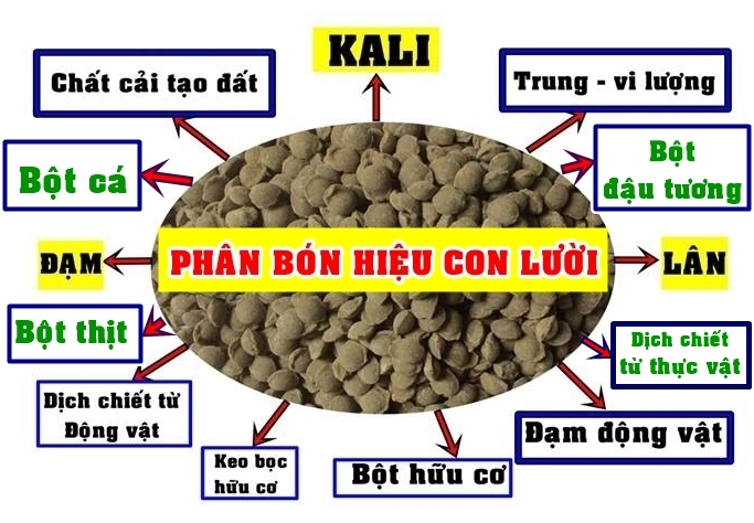 SẢN PHẨM PHÂN BÓN HIỆU CON LƯỜI CỦA NĂM 2019